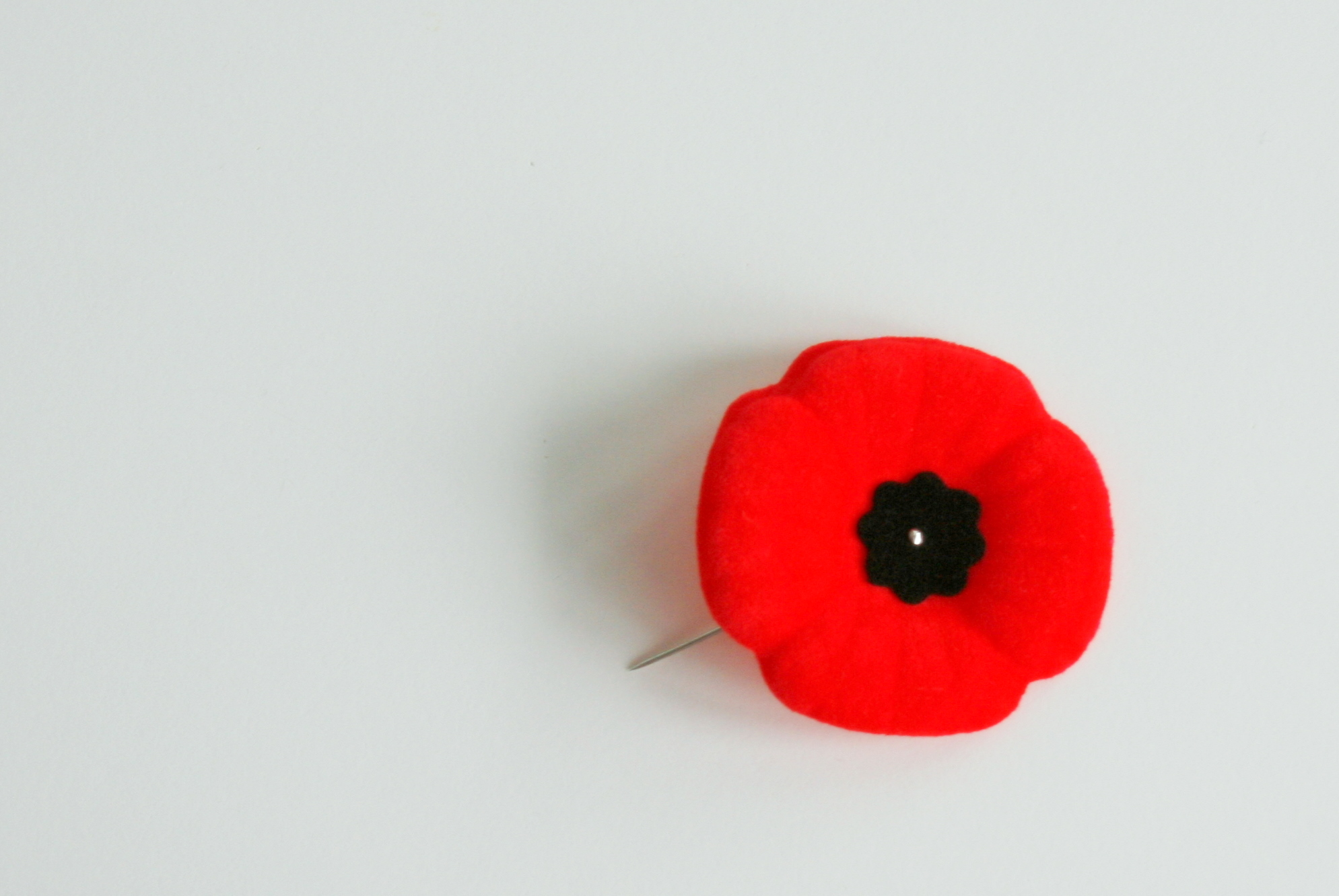 Did You Wear Poppy Pin On Remembrance Day Tellwut