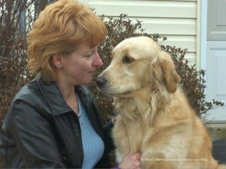 TOBY THE GOLDEN RETRIEVER: Toby, a 2-year-old golden retriever, saw his owner choking on a piece of fruit and began jumping up and down on the woman's chest. The dog's owner believes the dog was trying to perform the Heimlich maneuver and saved her life. Debbie Parkhurst, 45, said she was eating an apple at her home when a piece lodged in her throat. She attempted to perform the Heimlich maneuver on herself but it didn't work. After she began beating on her chest, she said Toby noticed and got involved. The next thing she knew, Toby was up on his hind feet with his front paws on her shoulders. He pushed her to the ground, and once she was on her back, he began jumping up and down on her chest. That's when the apple dislodged and Toby started licking her face to keep her from passing out. Are surprised that Toby did the Heimlich maneuver to help save Debbie's life?