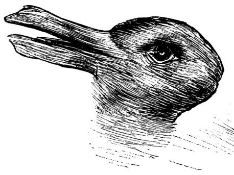 Do you see a rabbit or a duck in this 100-year-old optical illusion?