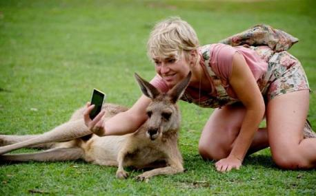 There is a time and a place for taking selfies, but when circumstances are such that selfie-taking involves putting an animal at risk (DON'T DO IT). Do you agree with this statement?