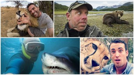 Would you risk the life of a wild animal just to have that selfie moment?