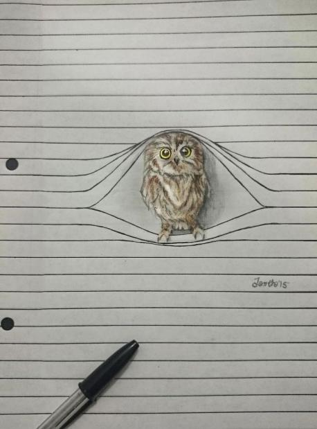 Do you like this drawing of the owl?
