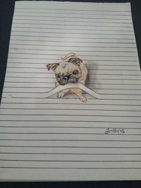 Do you like this drawing of the pug?