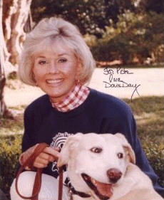 The Doris Day Animal Foundation awards grants, funding other nonprofits across the U.S. Which Doris Day foundation's legacy projects are you aware of?