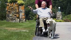 Bush had a form of Parkinson's disease that caused slow movements and difficulty balancing, among other symptoms. He frequently used a wheelchair toward the end of his life, and Sully provided assistance with daily life. Sully could open doors, pick up items and summon help. Do you know anyone who has a service dog?