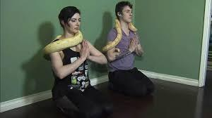 Forget goat yoga. One yoga studio in Vancouver is set to offer a yoga class with a twist -- snake yoga. A couple who loves snakes and yoga have decided to blend their two passions together and will hold a snake yoga class this January. The couple, Tristan Risk, and Joshua Burns hope that their snake yoga classes will also help folks who have a fear of the reptiles overcome it in a controlled environment. Why snakes, you might ask?