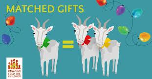 One of my favorite gifts of charity is to donate the gift of livestock to a country in need. Through organizations like Canadian Feed The Children or Plan International Canada (and I'm sure there are similar organizations in the U.S.) you can actually gift a poor country with chickens, goats or other livestock, These are not symbolic gifts, but real tangible livestock that can make all the difference to a village in need. When you choose a goat, your money goes directly to a goat program in a country like Cameroon. So the gift you choose is exactly where your money goes. Have you ever given a gift like this?