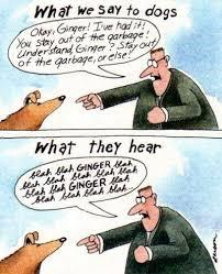 Larson has some favourite targets -- notably cows and household pets. Do you appreciate the humour in this strip?