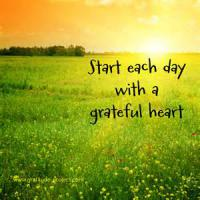 The study also mentioned that people who keep gratitude journals on a weekly basis are healthier, more optimistic, and more likely to make progress toward achieving personal goals. How often do you say