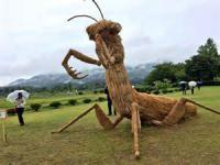 In Japan they found a creative way to use straw left over from their rice harvest organizing a
