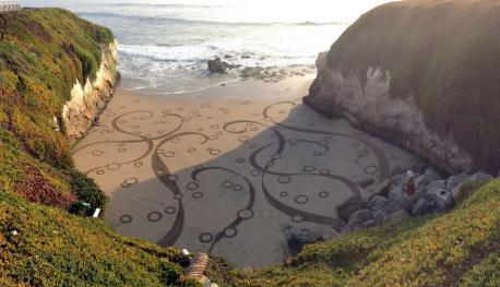 Andres Amador (BA in Environmental Science) joined the Peace Corps and started a regular career, till he visited Burning Man in 1999 and decided to change his lifestyle. After quitting his job, in 2004, he started creating sand-paintings up to 100,000 square feet in size when the tide was low. Have you seen his work before this survey?