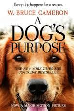 The story goes around a dog coming back to life, trying to find his purpose and his relationship with his first chosen human. I should admit I had tears rolling during most of the movie. I loved it. It reminded me so much about my dog, and previous ones I had that did make a huge difference in my life. If you watch the movie, was it emotional for you?
