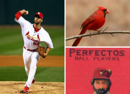 Many fans assume that the St. Louis Cardinals got their name and colors from the bird that is native to the area, but it actually might have come from an overheard conversation. The story suggests that Willie McHale (a columnist for the St. Louis Republic) heard a woman is the stands say that the jerseys were