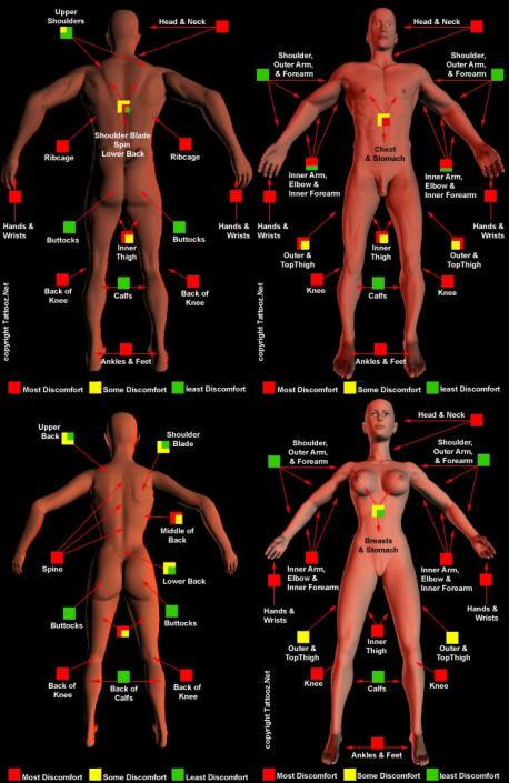 This chart (from Pinterest..sorry if it's offensive) shows the pain level of getting a tattoo on certain areas of the body. If you're considering getting one, would this help you decide on it's placement? (To enlarge, click on image.....look at top right of picture and click on the fill page icon)