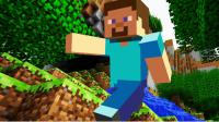 Have you heard of the game Minecraft?