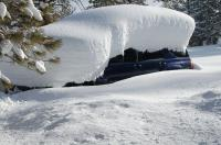 What is the most snow that has fallen in a single storm where you live?