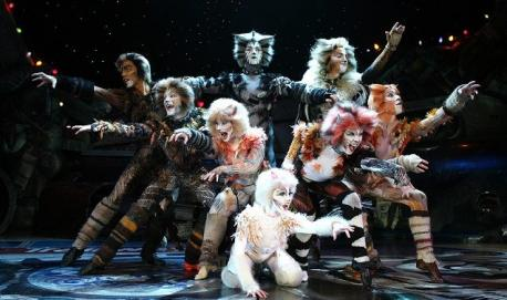 Have you ever seen Cats: The Musical as a live performance?