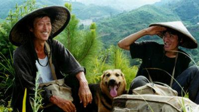 The movie, set in the early 80's, is about a mailman in rural China who has spent his lifelong career delivering mail on foot with the help of his German Shepherd named Buddy. Now, he must teach his 24-year-old son to take over his postal route as he (the father) retires. Does this sound like a movie you might like?