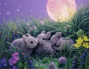 Do you think rabbits are cute, or do you think of them more as pests?