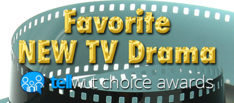 Tellwut Choice Awards - Favorite New TV Drama