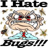 Fear of insects mainly includes a disgust response or aversion to bugs. Insects and bugs often appear