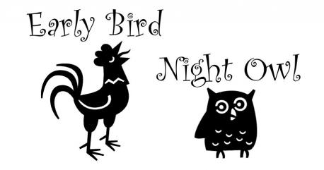 Are you more of a night owl or an early bird?