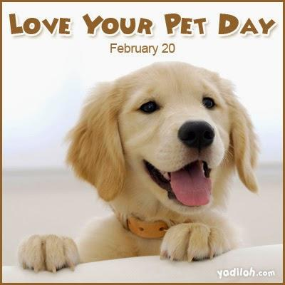 Did you know that February 20, 2016 is love your pet day?