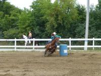 Have you ever watched barrel racing live?