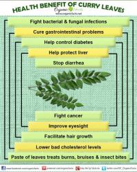 Did you know that curry leaves have various health benefits?