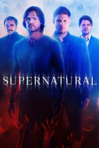 Based on the show Supernatural: Who is your favorite Winchester?