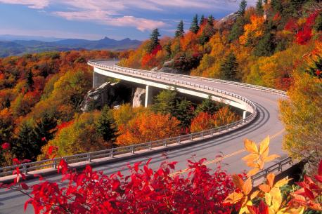 Blue Ridge Parkway, the Carolinas and Virginia---This road is nearly 500 miles of natural beauty, twisting through the Great Smokey Mountains and Shenandoah national parks. Frequent stops lead to amazing panoramic views and some excellent bird watching.