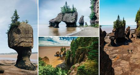 Hopewell Rocks (New Brunswick)--- Onlookers can either stroll along the shores of the Bay of Fundy to explore the unique layout of the area, or be forced to stay clear of the premises due to waters reaching depths of 16 metres (52 feet). This is due to the extreme low and high tide that occurs daily, but once the waters have retreated, getting a glimpse of the Hopewell Rocks is what makes this destination distinctive. These rocks, during low tide, stand 12 to 20 metres tall (39 to 65 feet) with no water surrounding them, and feature formations with trees attached to their tops, giving them their nickname of