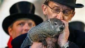 Did you hear that Punxsutawney Phil predicted an early spring this year?
