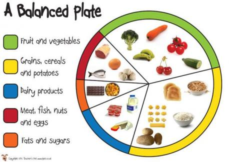 Are you able to take balanced food plate every single day?