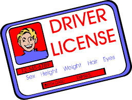 Do you have a valid driver's license?