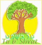 Trees are a special part of Judaism (from Jewish learning)