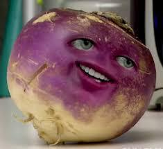 The turnip is a root vegetable, high in vitamin C. If you are familiar with turnips, do you like them?