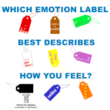 I am the type of person that needs labels or an explanation for my feelings. So the Kubler-Ross is beneficial for me. How about you, does having a label, reason, or explanation for how you feel help you transition what you are going through?