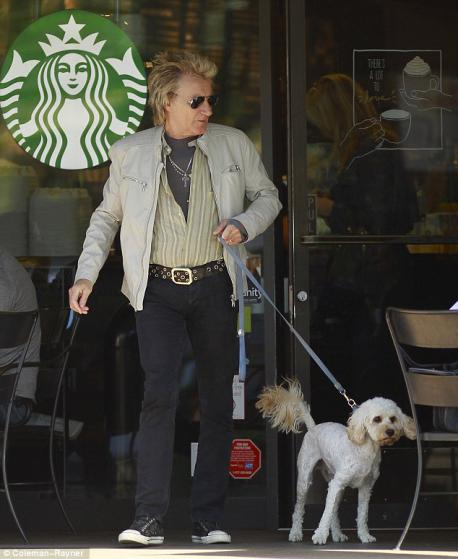 I am very close to the studios, and hear from friends of the Starbucks where there are always celebs. If you've got a favorite celeb/singer would you intentionally hang out there to meet them?