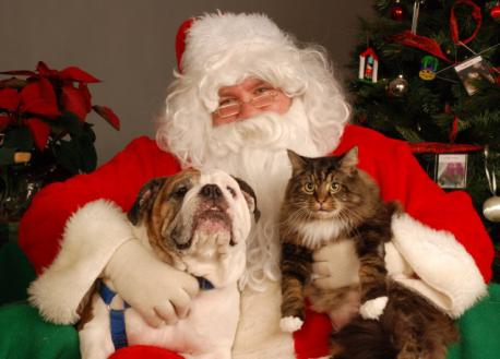 As a pet owner, my pets were family to me, so I think it's a great opportunity for pet owners to have pics with Santa, especially if there are no kids around to do so. If you're a pet owner, do you consider you pet(s) to be family members?