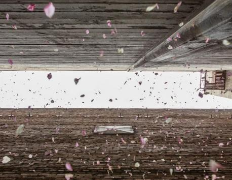 *LAist* The latest project from the anonymous art collective that secretly installed the Griffith Park Teahouse will shower flower petals on visitors to an alleyway between historic theaters in downtown L.A. this weekend. The installation, known as