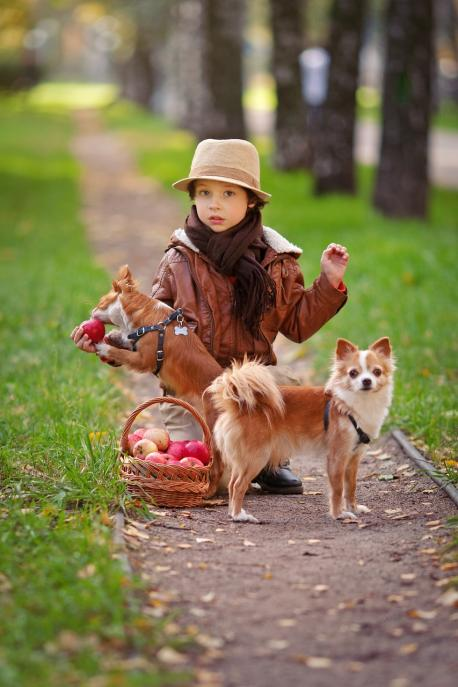 Would you rather choose to have kids or have pets?