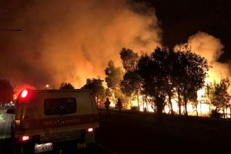 There was a brush fire in Coolum that started on Monday, January 16. It started about 4:30am and rangers suspect an arsonist, do you know anyone who has deliberately set a fire?