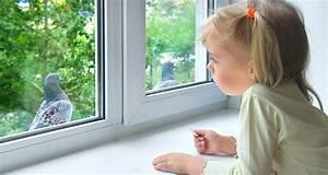 How about opening up a window to the change of weather and listening to hear the birds sing their beautiful song,