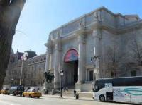 Have you ever been to the American Museum of Natural History in New York?