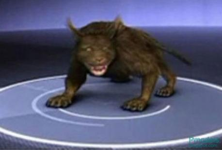 North Carolina: The Beast of Bladenboro - Many regions in the United States have their own urban legends of a story about a mutant creature in the woods who kills viciously and indiscriminately. In North Carolina, it's the Beast of Bladenboro, described by locals as a panther-like, bloodthirsty killer lurking in the darkness. It is said to have attacked numerous dogs and even people. Are you familiar with this legend?